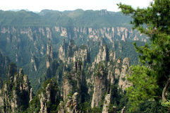 porslinberg zhangjiajie arkivbilder