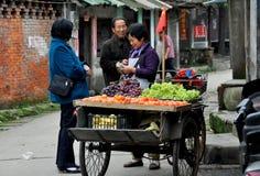 porslinet bär fruktt pengzhouen som säljer gatasäljaren Royaltyfria Foton