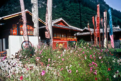 porslinet houses traditionellt Arkivfoton