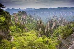 porslinliggande som bedövar zhangjiajie Arkivbilder
