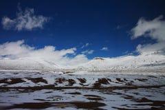 porslinliggandenatur tibet Arkivbild