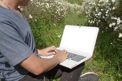 Portátil do uso do homem no campo do crisântemo Fotografia de Stock