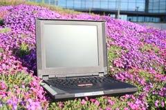 Portátil em flores Fotos de Stock Royalty Free