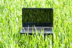 Portátil na grama verde foto de stock