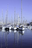 Port à Barcelone, Espagne Photographie stock