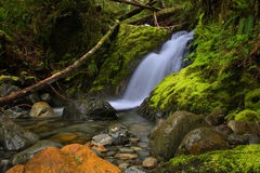 Port Alberni - Unnamed Falls in Fossli Park Royalty Free Stock Images