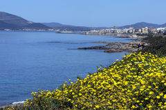 Port of Alghero - Sardinia - Italy Royalty Free Stock Photography