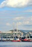 Port av den Vladivostok staden Fotografering för Bildbyråer
