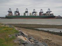 Port av Felixstowe, Suffolk, UK, Juni 11 2017: Kranar som laddar behållare på det Thalassa Elpida lastfartyget Royaltyfria Bilder