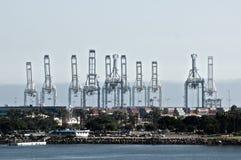 Port av Long Beach royaltyfria foton