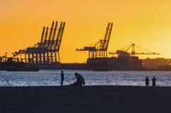 Port av Long Beach på solnedgången royaltyfri fotografi