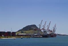 Port av Tauranga Royaltyfri Fotografi