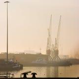 Port avec des grues - grand dos cultivé Photographie stock libre de droits