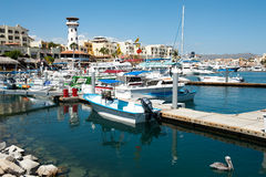 Port of cabo san lucas Stock Photo