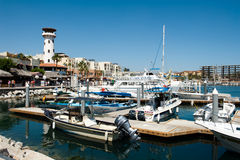 Port of cabo san lucas Royalty Free Stock Photography