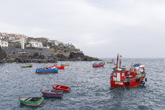 Port in Camara de Lobos Stock Images