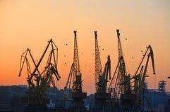 Port cargo crane at sunset Royalty Free Stock Photos