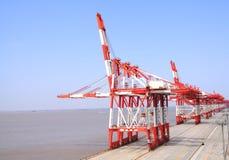 Port Cargo Cranes Royalty Free Stock Image