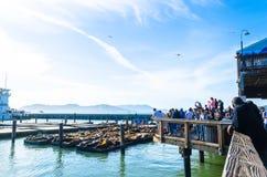 Port chez la Californie, Etats-Unis Photos stock