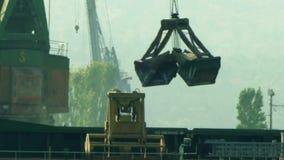 Port crane unloading and loading grain. 4K video stock video