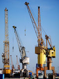 Port Cranes. At the ready Stock Photo