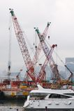 Port cranes. Royalty Free Stock Image