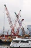 Port cranes. Royalty Free Stock Image