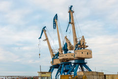 Port cranes on bright summer day Stock Image
