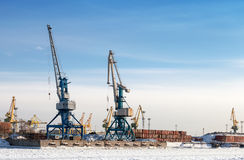 Port cranes in cargo port of St.Petersburg Stock Image