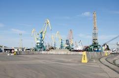 Port cranes in sea port Stock Photography