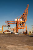 Port cranes shown vertically Royalty Free Stock Image