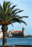 Port de Collioure Photographie stock
