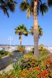 Port de Grimaud en France Image stock