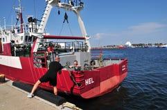 Port de Hel, Pologne, août 2017 Haussière de pullingh d'homme photographie stock libre de droits