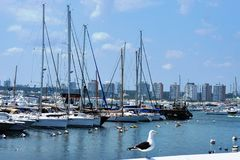 Port de Montevideo - Uruguay Images libres de droits