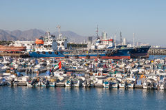 Port de pêche de Kalba, Foudjairah, EAU Images stock
