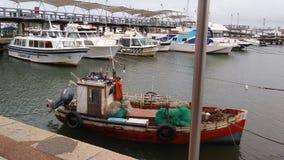 Port de Punta del Este image stock