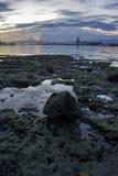 Port de ville de Cebu Images libres de droits