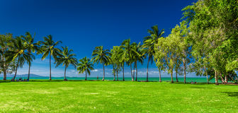 PORT DOUGLAS, AUSTRALIA - 27 MARCH 2016. Rex Smeal Park in Port Stock Photography