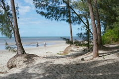 Port Douglas Royalty Free Stock Images