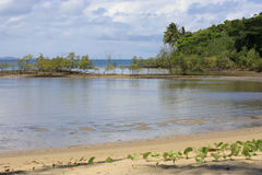 Port Douglas waterfront 8506 Royalty Free Stock Images