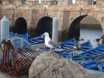 Port Essaouira, Maroko Obrazy Royalty Free