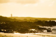 Port Fairy lighthouse sunrise with fog. Port Fairy lighthouse beach sunrise with sea fog roll in over black volcanic rock Royalty Free Stock Images