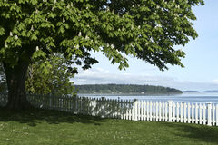 Port Gamble WA. Flowering tree and white picket fence lined lawn overlooking Admiralty Inlet Puget Sound Washington State Pacific Northwest royalty free stock photography