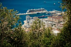 Port of Gibraltar. Gibraltar Harbour with some out of focus foliage in foreground viewed from the top of the Rock of Gibraltar. Photo with shallow depth of field royalty free stock photos