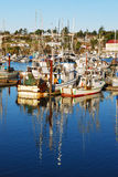 Port of Gold Stock Photography