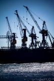 Port of Hamburg Royalty Free Stock Image
