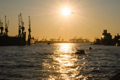 Golden emotions in Hamburg. Port of Hamburg during sunset Stock Photos