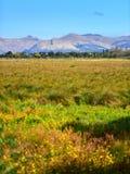 Port Hills como visto de Travis Wetland Nature Heritage Park em Nova Zelândia fotografia de stock