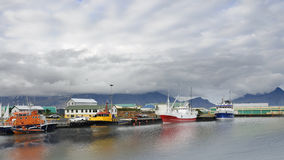Port of Hofn in south Iceland Stock Photography